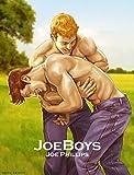 JoeBoys