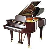 C. Bechstein Pianofortefabrik B 1901/2Schwanz schwarz Polyester