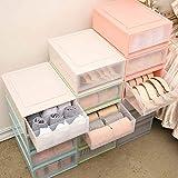 Homieco Stapelbare Truhe Kunststoff Transparent Drawer Divider Unterwäsche Sock Veranstalter Kleiderschrank Aufbewahrungsboxen, 15 Cell/Beige