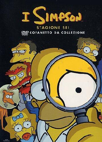 i-simpson-cofanetto-da-collezione-stagione-06