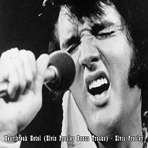 Heartbreak Hotel (Elvis Presle...