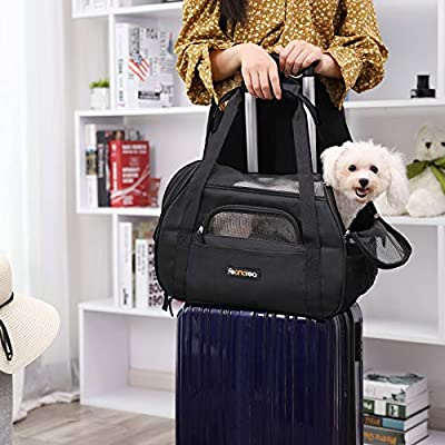 FEANDREA Foldable Pet Dog Carrier Handbag with Shoulder Strap, for Car, Train and Airplane Travel, Polyester and Tear-Resistant Mesh, Garbage Bag Included from FEANDREA