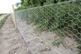 Suregreen Chicken Wire 1.2m x 25m Hexagonal Galvanised Metal Fencing, Ideal for Chicken Coops, Small Animals & Dog Mesh, Boundary Fencing, and Aviaries - 50mm Holes Bild