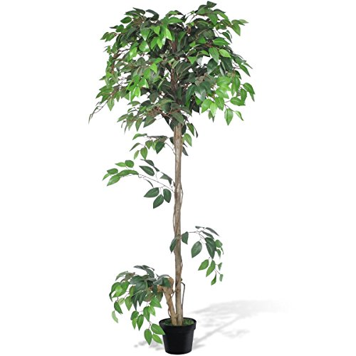 vidaXL Albero Ficus Artificiale con Vaso 160 cm