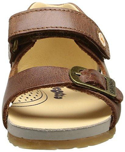 Naturino Falcotto 1406, Chaussures Bébé marche bébé garçon Marron