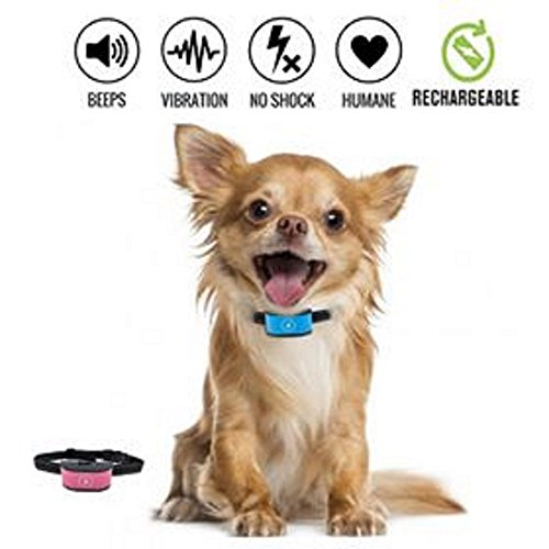 Anti bark Halsband Stop Hund Bellen Halsband, keine Schock Barke Kontrolle Ausbildung Kragen für kleine und mittlere Hunde humane und sichere Barke Abschreckung jafaa Anti Bark Collars keine Rinde (Bellen Kragen Hund Schock)