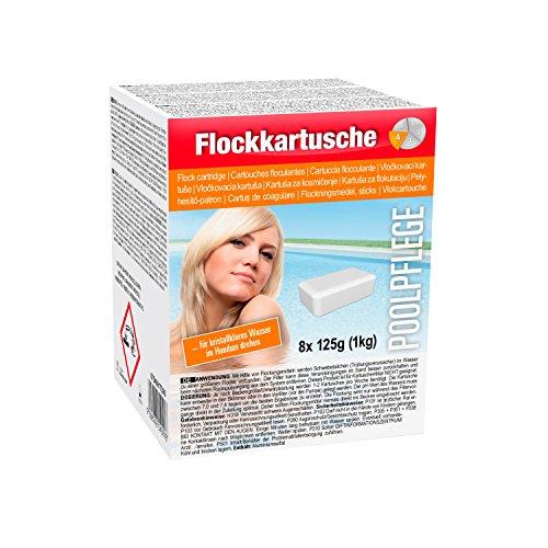 Steinbach Poolchemie Flockkartusche