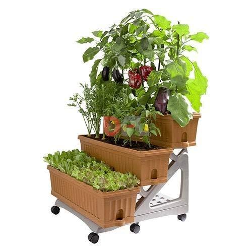 Bama Orto 3 Pots de Fleurs Jardin kit avec Chariot, 80 x 74 x 73 cm, Green, 80x74x73 cm
