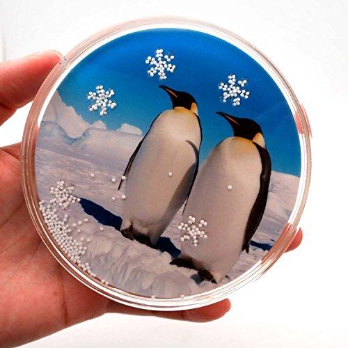 k 4-Zoll Untersetzer, einen Spaß zu drehen, Pinguin, Winter, Schneeflocke ()