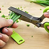 Best Herb Scissors - Teesta Multi-Functional Stainless Steel Kitchen Knives 5 Layers Review