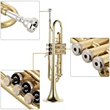 ammoon Trumpet Bb B Flat Brass Gold-painted Exquisite Durable Musical Instrument with Mouthpiece Valve Oil Gloves Strap Case