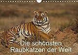 Die schönsten Raubkatzen der Welt (Wandkalender 2020 DIN A4 quer): Bilder von den schönsten Raubkatzen, dem Gepard, dem Leopard, dem Löwe und dem Tiger. (Monatskalender, 14 Seiten ) (CALVENDO Tiere)