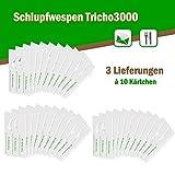 Schlupfwespen gegen Lebensmittelmotten - Bis 4 Küchenschränke und 4 Ablageflächen - 3 Lieferungen x 10 Kärtchen