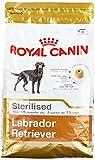Royal Canin Labrador Adult Sterilised, 1er Pack (1 x 3 kg)