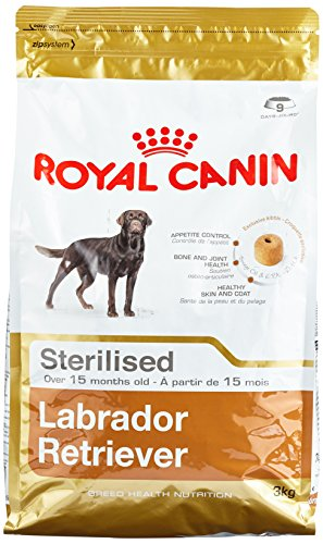 Royal Canin Labrador Adult Sterilised, 1er Pack (1 x 3 - Retriever Sterilised Labrador Royal Hundefutter Canin