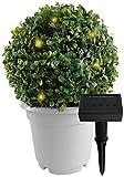 Solarleuchte Buchsbaumkugel im Topf mit insgesamt 15 LEDs - Warmweiß - Solar - Ø 24 cm - höhe: 31cm - Dämmerungssensor