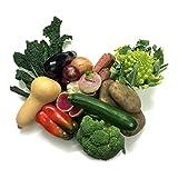 "Turnips ""Fundamentals"" Vegetable Box (10-15 Varieties)"