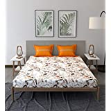 Trident Comfort Living 100% Cotton Double Bedsheet with 2 Pillow Covers, Simone Orange