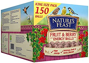 Nature's Feast Fruit and Berry Energy Suet and Fat Balls, 150 Box from NeatureFeast