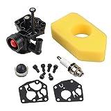 HIPA 795477 Carburateur + 698369 Filtre à Air pour Tondeuse Briggs & Stratton 795469 794147 699660 794161 498811