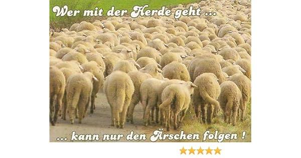 Herde  Postkarte - Wer mit der Herde geht kann nur den Ärschen folgen ...