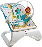 #3: Fisher Price Colourful Carnival Comfort Curve Bouncer, Multi Color
