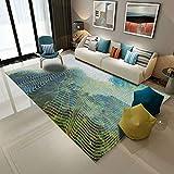 LUYIASI- Tappeti di corridoio della moquette della stuoia del tappeto della stuoia del corridore della stuoia del corridore di Microfiber antisdrucciolevoli della stampa 3d Non-slip mat