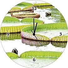 Artland Reloj de silenciosa de calidad de pared digital de impresión sobre vidrio yuri2011Lotus Flores en Tailandia Botánica hojas fotografía verde 35x 35x 1,8cm