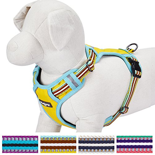blueberry-pet-3m-reflective-multi-colored-stripe-padded-dog-harness-vest-in-yellow-s-m