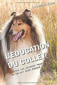 L'EDUCATION DU COLLEY: Toutes les astuces pour un Colley bien éduqué