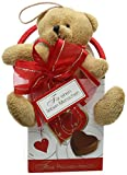 Gunthart Plush Bear in Box Assorted with Chocolate Hearts