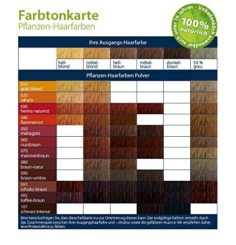 LOGONA Naturkosmetik Coloration Pflanzenhaarfarbe, Pulver - 080 Braun-Natur - Braun, Natürliche & pflegende Haarfärbung (100g) - 3