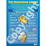 L' unione europea |business studi grafico a parete/poster educativo in alto, formato A1, 840mm x 584mm)