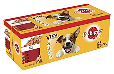 Pedigree Dog Food Pouches Mixed Varieties in Jelly, 100 g (Pack of 40)