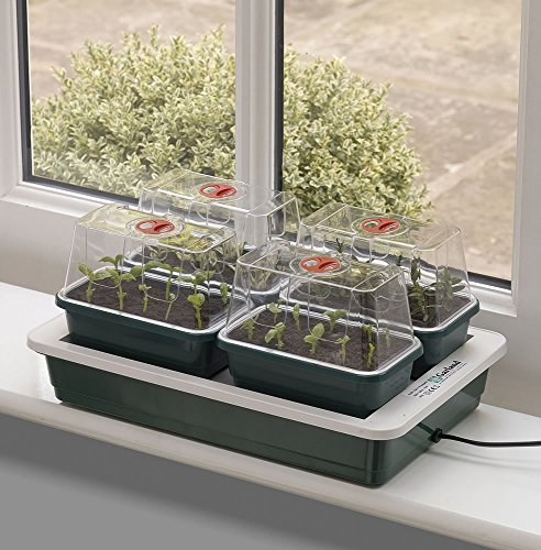 Garland Fab 4 Electric Heated Propagator, Green, 39x25x16 cm