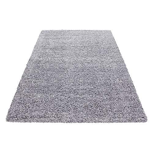 hflor Langflor Teppich Wohnzimmer Carpet Uni Farben, Rechteck, Rund, Farbe:Hellgrau, Größe:300x400 cm ()