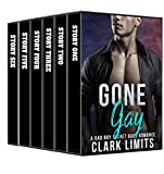 Gone Gay: Nine Explicit Stories (English Edition)