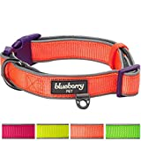 Blueberry Pet Soft & Comfortable New Summer Hope 3M Refelctive Fluorescent Orange Padded Collar, Neck 37cm-50cm, Medium, Collars for Dogs, Matching Harness Available Separately