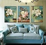 OBELLA Malen nach Zahlen 3 teilig Bilder für erwachsene triptychon XXL DIY ölgemälde 50x40 cm x3 Weiß Wasser Hibiskus Blume (Mit Rahmen)