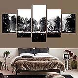 HIMFL Componibile Immagini Arte muraria Stampe HD 5 Pannelli Guerre Stellari Tela Pittura Letto a casa Sfondo Arredamento Moderno Opera d'Arte,A,30×40×2+30×60×2+30×80×1