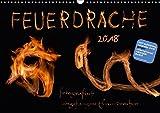 Feuerdrache (Wandkalender 2018 DIN A3 quer): Fotografisch eingefangene Feuerdrachen (Monatskalender, 14 Seiten ) (CALVENDO Kunst) [Kalender] [Apr 01, 2017] v.Kleist, Kamran