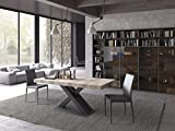 Altacom Esstisch Belluno | Tisch | Küchentisch| Wildeiche Optik | 180 x 90 cm ausziehbar 230/280 mit kratzfester Melamin Oberfläche