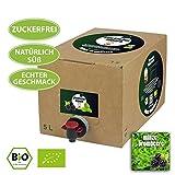 glücklicher mönch Bioeistee - süßes Bio-Eisteekonzentrat mit echten Steviablättern, ohne künstliche Zusatzstoffe - ergibt zuckerfreien Premium Eistee! (1x Minze-Brombeere (5 L))