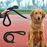 Dealglad®, guinzaglio per cani in nylon intrecciato, per cani di taglia media e grande