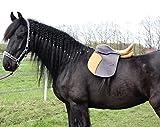 Campale Dressursattel Oxford 17 Zoll Leder Pferdesattel Pferd Dressur Sattel