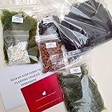 Kit terrarium cactus et succulente / Guide étape par étape (français non garanti / emballé en Angleterre) M