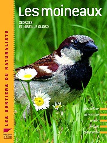 Les moineaux : Description, répartition, habitat, moeurs, observation