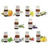 Aroma Basis Set : Anteil Von 10 ÄTHERISCHEN ÖLEN 10ML: Lavendel - Eukalyptus - Pfefferminze - Teebaum - Niaouli - Orange - Rosmarin - Ylang ylang - Zitrone - Zitronnella