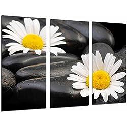 Cuadro Fotográfico Decoracion Zent Flores, Margaritas sobre Piedras Tamaño total: 97 x 62 cm XXL