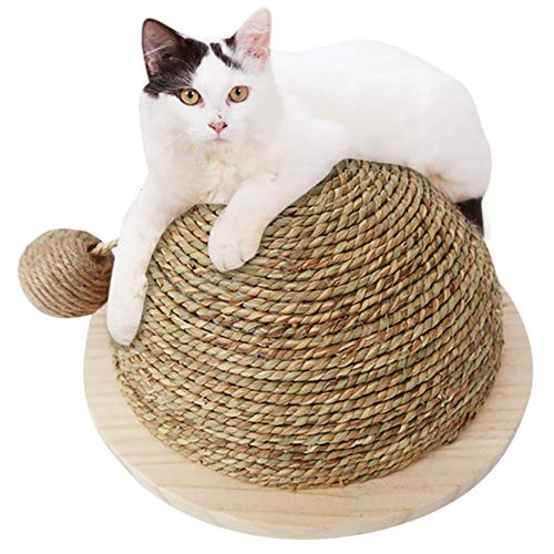 Hemispherical Cat Scratchers Pad-Katzenspielzeug Cat Scratch Board mit Sisal-Hängekugel ()